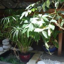 Fontaine du jardin intérieur