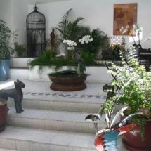 Le Petit Siam - Jardin intérieur