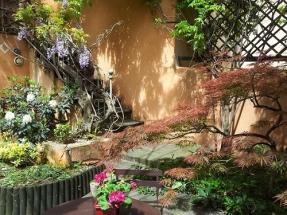 Le Petit Siam - Jardin japonisant