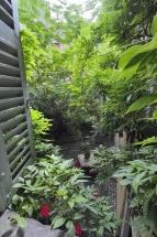 Le Petit Siam- Vue de la chambre Sukhothai
