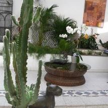 Le Petit Siam - jardin intérieur zen