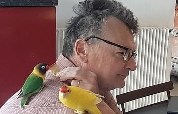Les oiseaux du Petit Siam